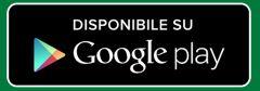 Questa immagine ha l'attributo alt vuoto; il nome del file è Google-RE.jpg